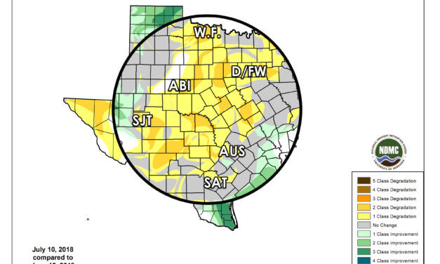 Texas Weekly Drought Update for July 12, 2018